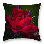 Temptation Throw Pillow