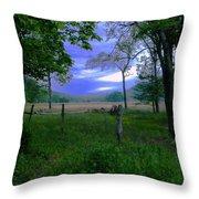 Tendar Morning Throw Pillow