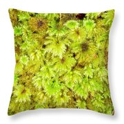 Tender Fresh Green Moss Background Texture Pattern Throw Pillow