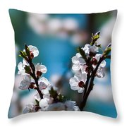 Tender Is The Day - Featured 3 Throw Pillow