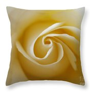 Tenderness White Rose 2 Throw Pillow