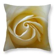Tenderness White Rose Throw Pillow