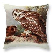 Tengmalms Owl Throw Pillow