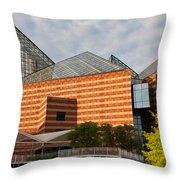 Tennessee Aquarium Throw Pillow