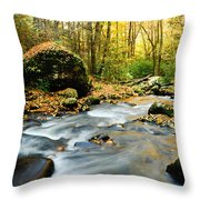 Tennessee Stream In Fall Throw Pillow
