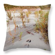 Tents At Yukon River In Remote Taiga Wilderness Throw Pillow