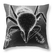 Termite Soldier Throw Pillow