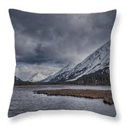 Tern Lake Throw Pillow