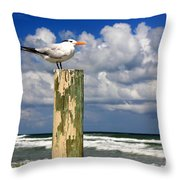 Tern On A Piling Throw Pillow