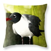 Tern Throw Pillow