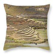 Terraces And Paddy Fields Throw Pillow