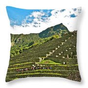 Terraces Of Machu Picchu-peru Throw Pillow