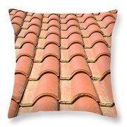 Terracotta Tiles Throw Pillow