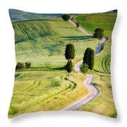 Terrapille Farm Throw Pillow