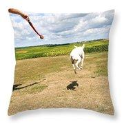 Terrier Levitation Throw Pillow