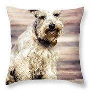 Terrier On Deck Throw Pillow