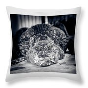 Terrific Wild Vision Throw Pillow