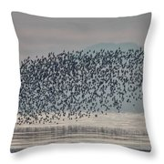 Terror In The Sky Throw Pillow