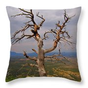Testament To Endurance Throw Pillow