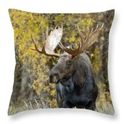 Teton Bull Moose Throw Pillow by Gary Langley