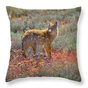 Teton Coyote Throw Pillow