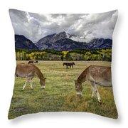 Teton Pastorale Throw Pillow
