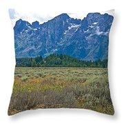 Teton Peaks And Flatland Near Jenny Lake In Grand Teton National Park-wyoming Throw Pillow