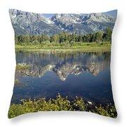 4m9310-teton Range Reflection, Blacktail Pond, Wy Throw Pillow