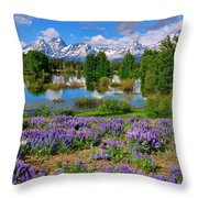 Teton Spring Lupines Throw Pillow