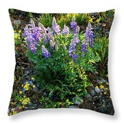 Teton Widflowers  Throw Pillow