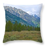Tetons Above The Meadow In Grand Teton National Park-wyoming Throw Pillow