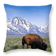 Tetons Buffalo Range Throw Pillow