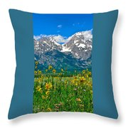 Tetons Peaks And Flowers Center Panel Throw Pillow