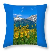 Tetons Peaks And Flowers Left Panel Throw Pillow