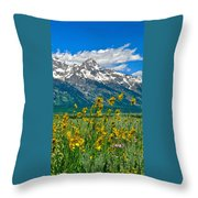 Tetons Peaks And Flowers Right Panel Throw Pillow