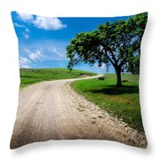 Texaco Hill Throw Pillow
