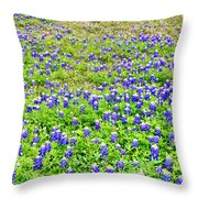 Texas Beauties Throw Pillow