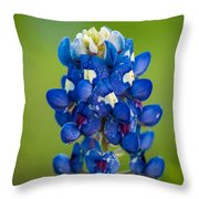 Texas Blue Throw Pillow