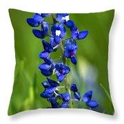 Texas Bluebonnet Throw Pillow