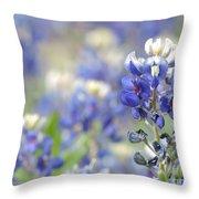 Texas Bluebonnets 05 Throw Pillow