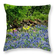 Texas Bluebonnets And Stone Wall Throw Pillow
