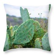 Texas Cactus Throw Pillow