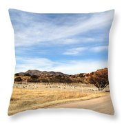 Texas Canyon In February Throw Pillow