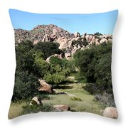 Texas Canyon Landscape Throw Pillow