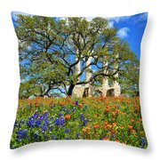 Springtime Ruins Throw Pillow