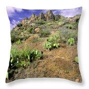 Texas Desert Throw Pillow