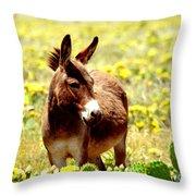 Texas Donkey In Yellow Cacti Throw Pillow
