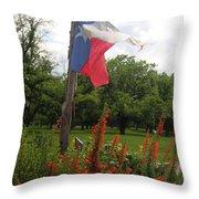 Texas Glory Throw Pillow