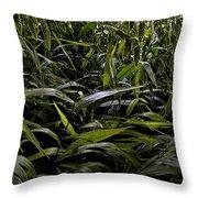 Texas Grasses Throw Pillow