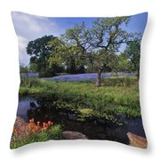 Texas Hill Country - Fs000056 Throw Pillow